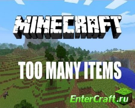 [1.3.1] TooManyItems